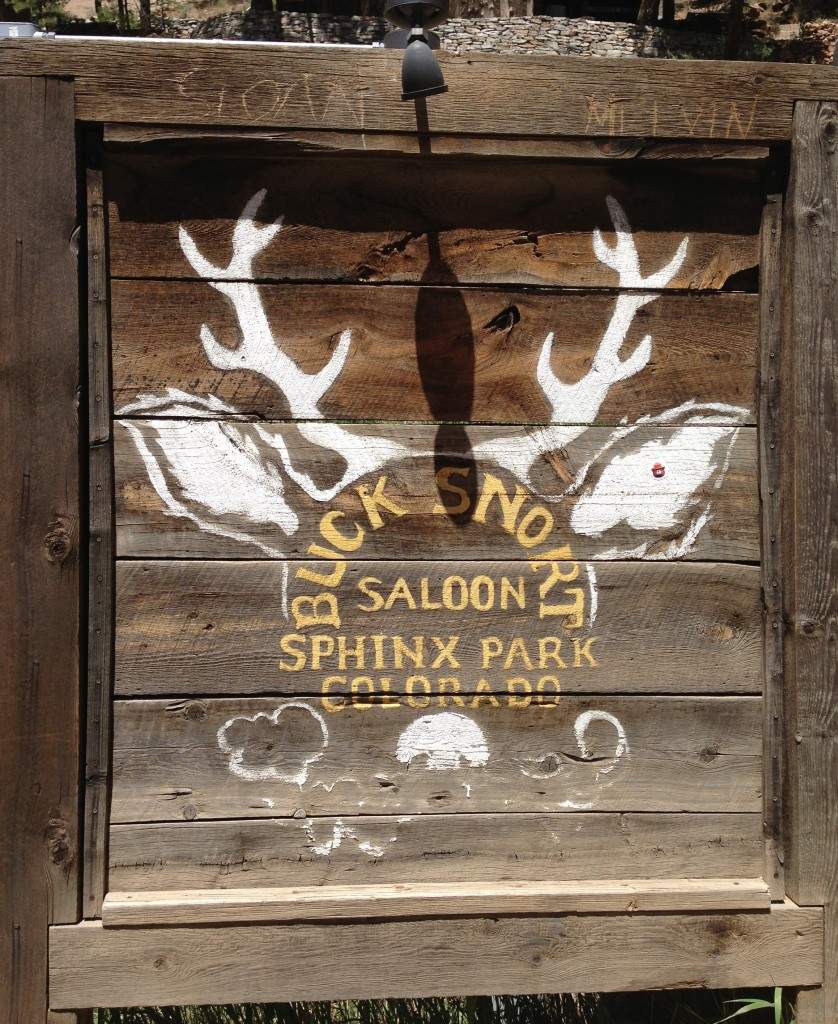Mile High Vegan Eats: Bucksnort Saloon