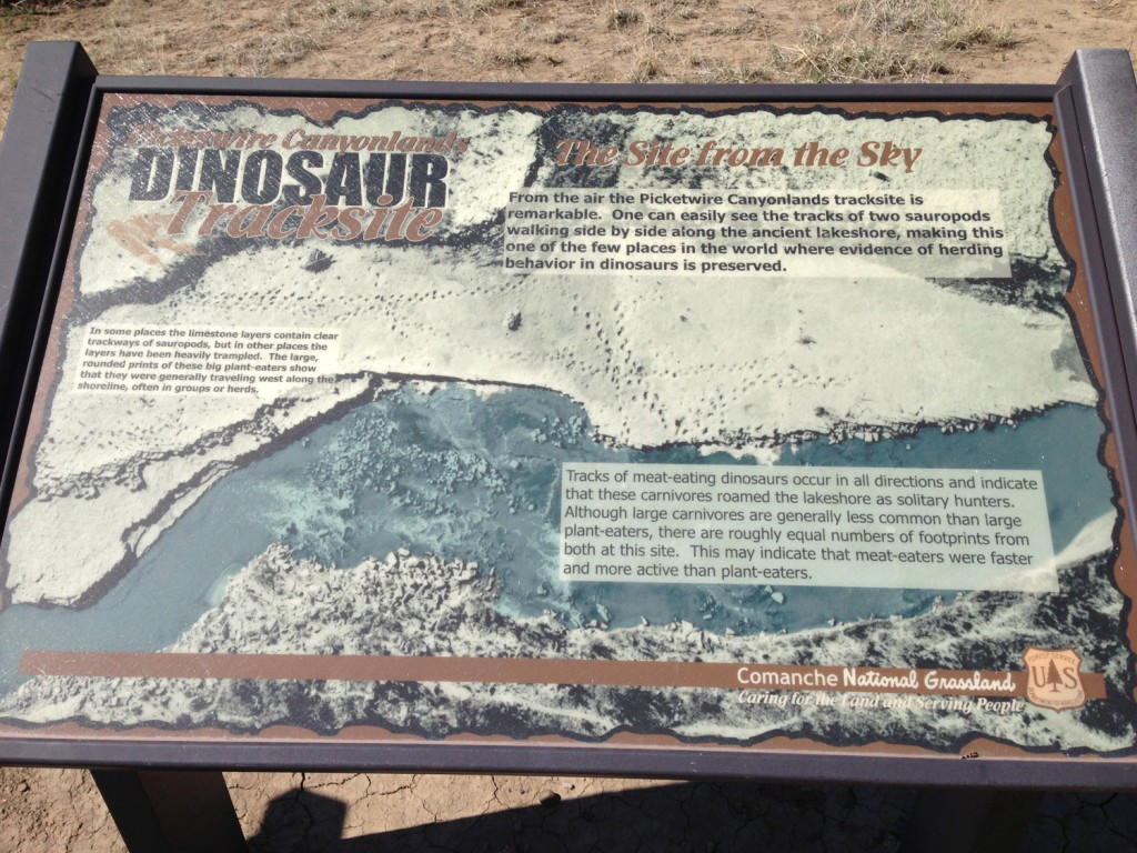 Picketwire Canyon Dinosaur Tracks