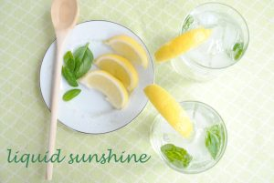 Liquid Sunshine: A Lemony Basil Vodka Cocktail | www.thatwasvegan.com